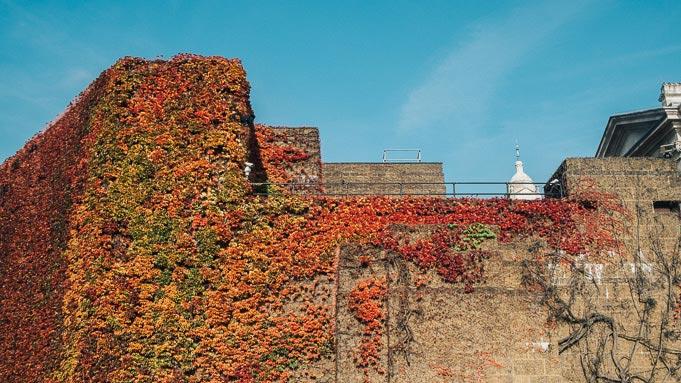autumn fall london john lewis christmas lookbook red orange-5