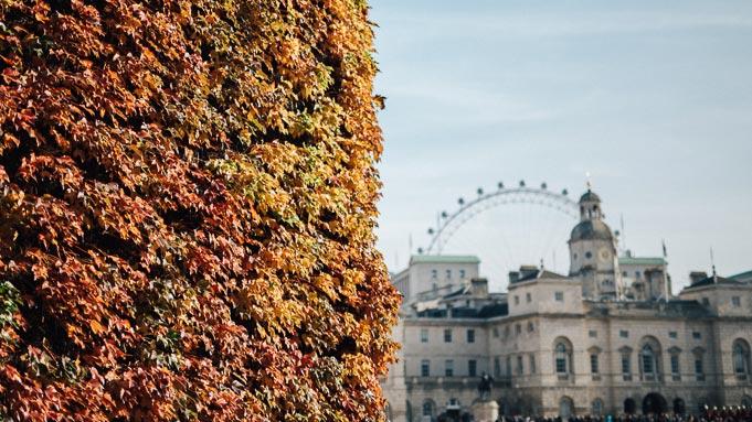 autumn fall london john lewis christmas lookbook red orange-55