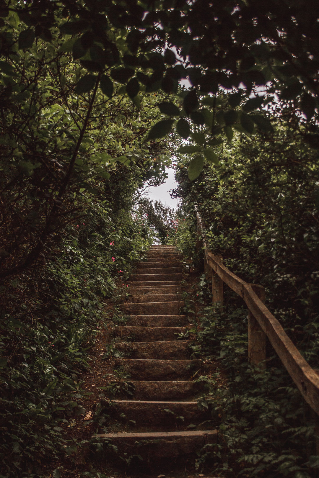 dorset stairway to heaven