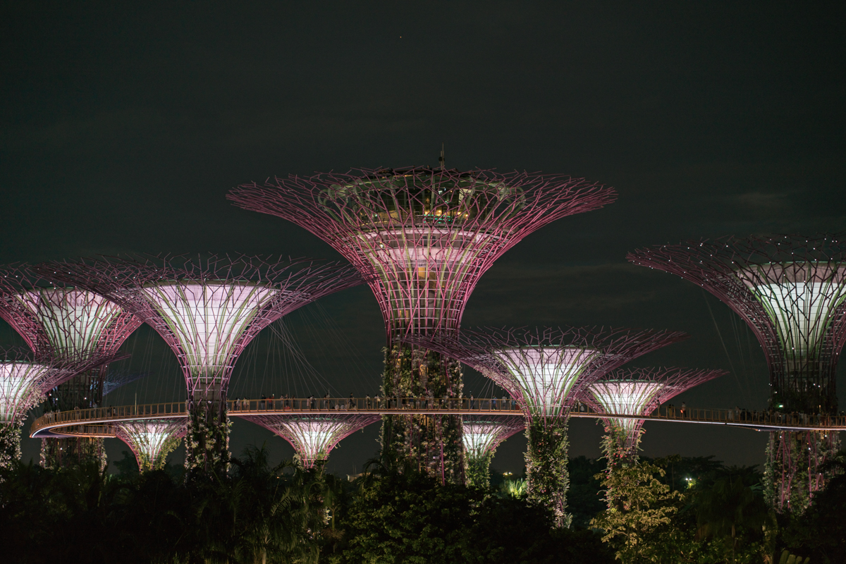 gardens by the bay show